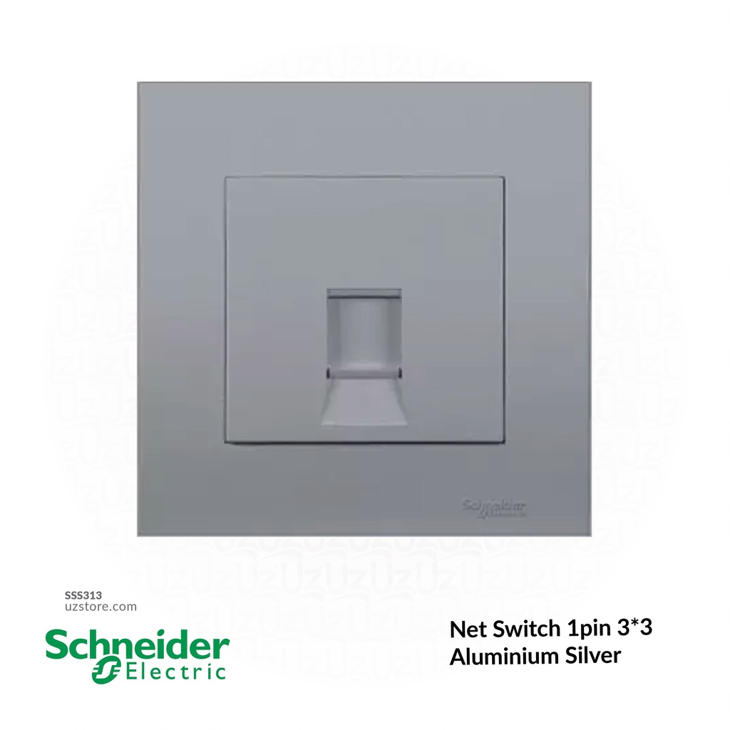 Net Switch 1pin 3*3 Schneider Alu. Sliver