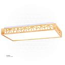 LED rectangle Celling Light X9116